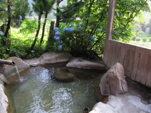 Private Hot Spring Bath #3